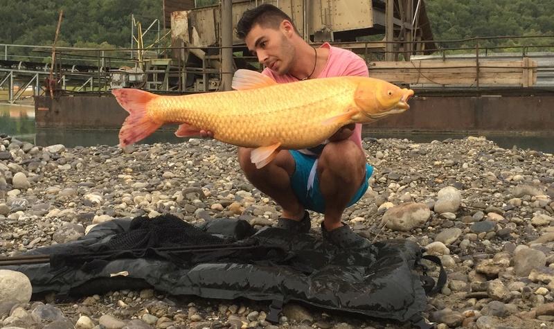 Poisson vue poisson pris ! Img_4111