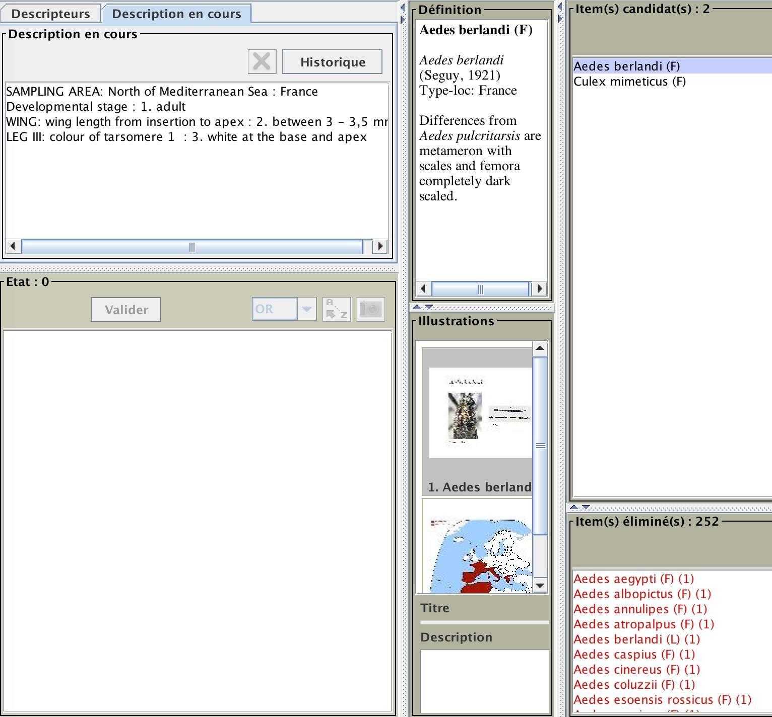 MosKeyTool : un outil interactif gratuit d'identification des moustiques en Europe Captur26