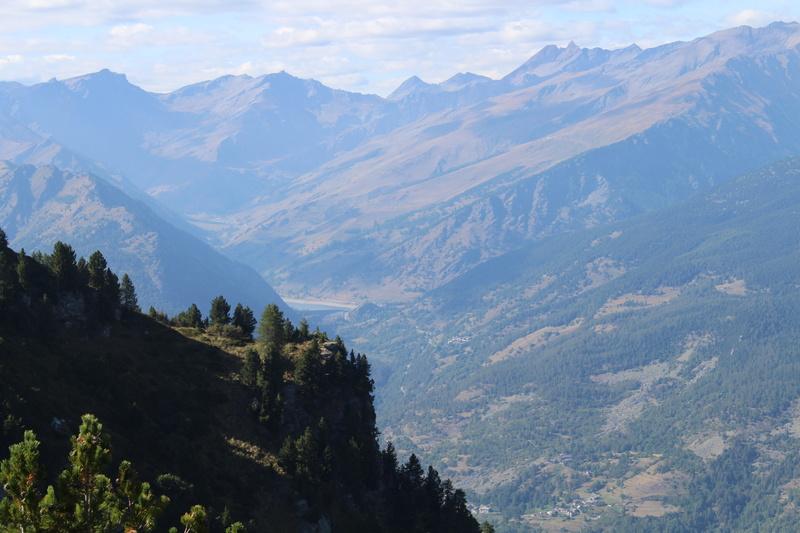Giretto in montagna Img_1614