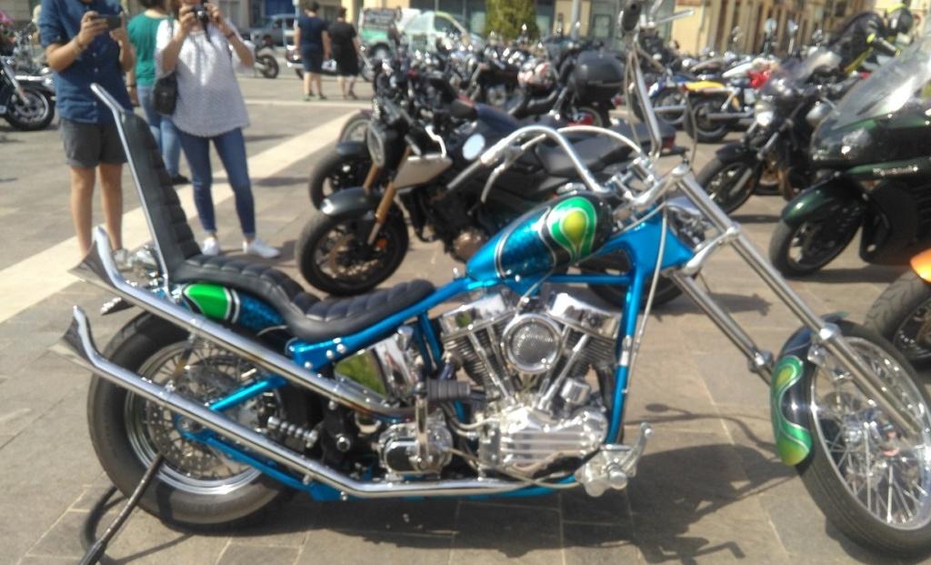 Harley custom Img_2258