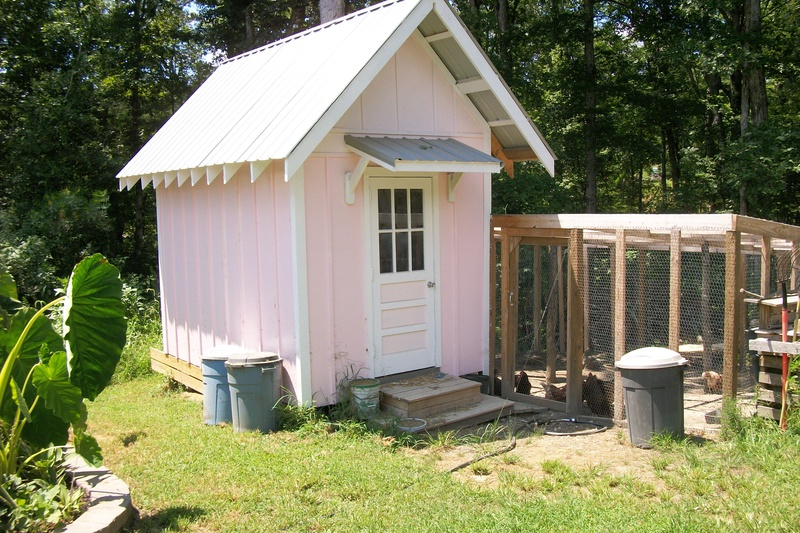 "Dixie's ""rustic"" garden shed Chicke11"