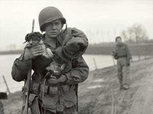 LES CHIENS SOUS L'UNIFORME DANS L'US ARMY Images11