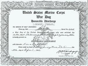 LES CHIENS SOUS L'UNIFORME DANS L'US ARMY Worls-16