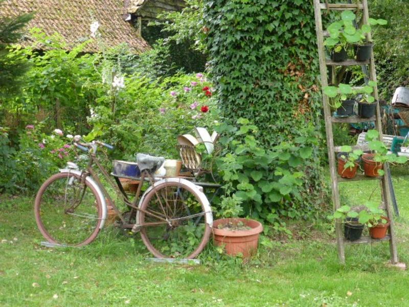 Mon jardin potager - Page 2 P1010418