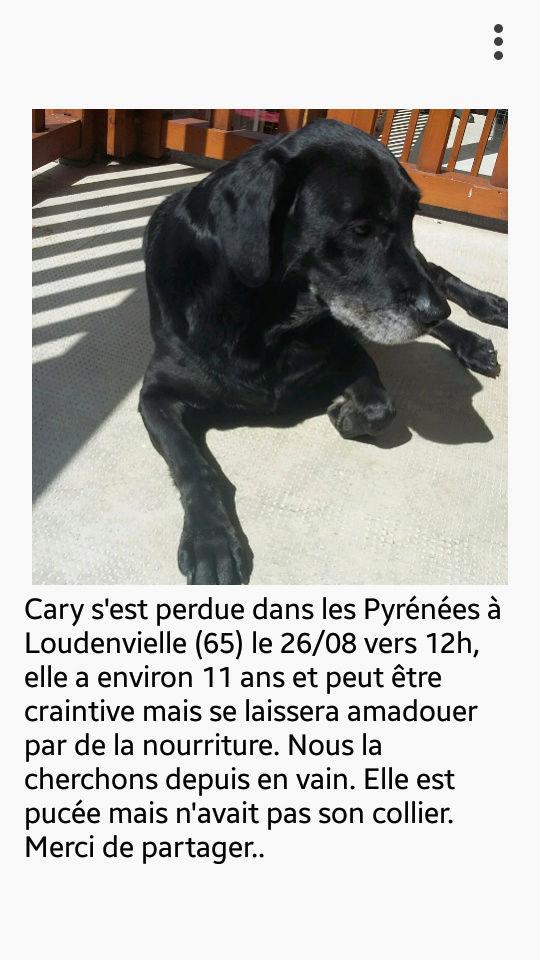 Cary perdue dans les Pyrénées RETROUVÉE Screen10