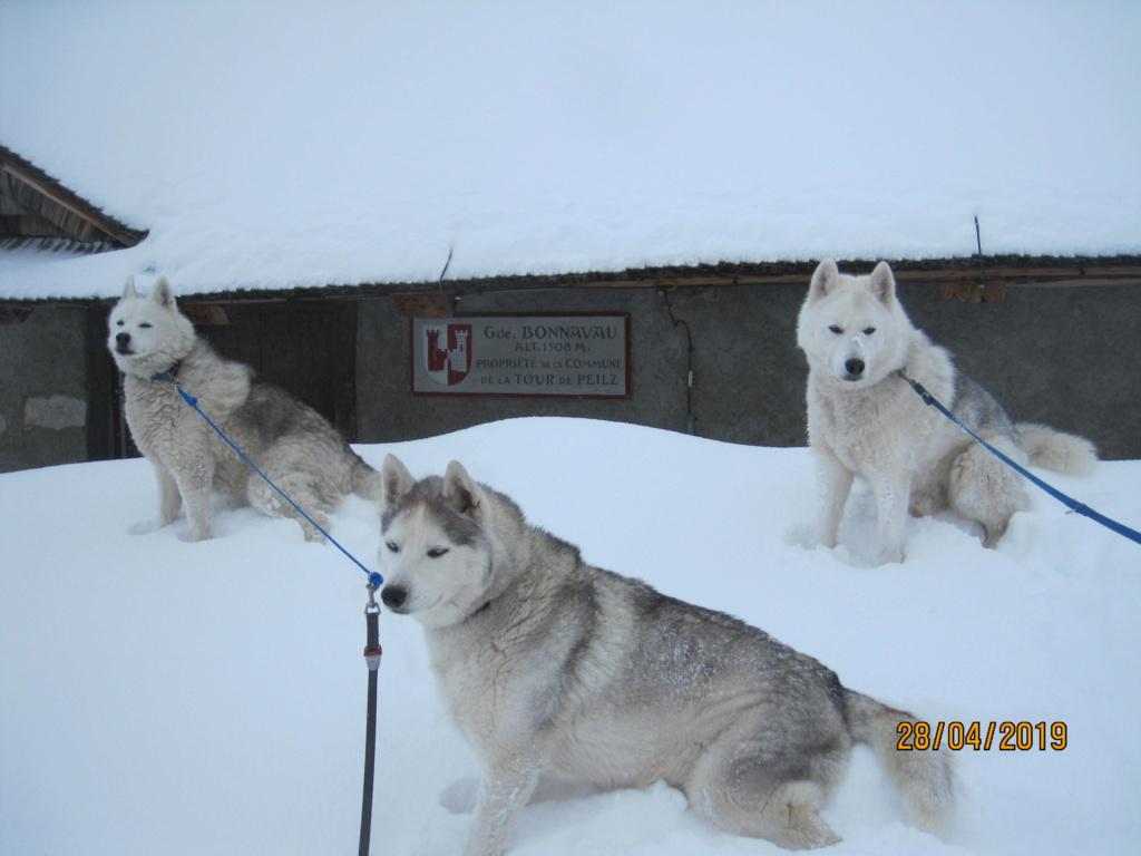 Saskia, Jiro, et leurs copains - Page 33 1327