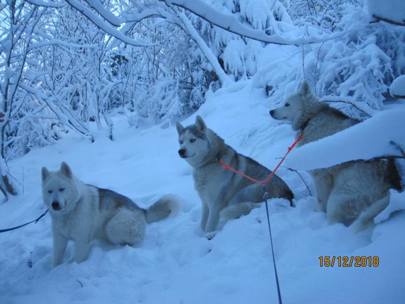 Saskia, Jiro, et leurs copains - Page 25 135