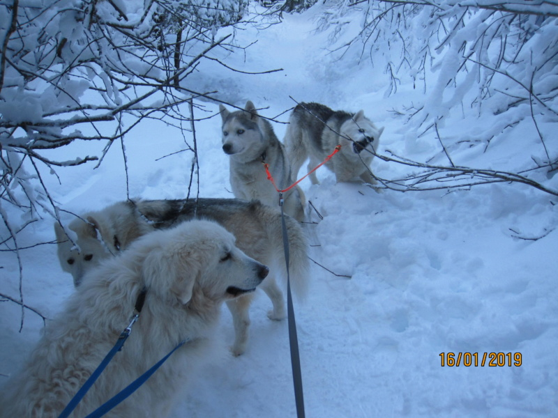 Saskia, Jiro, et leurs copains - Page 28 151