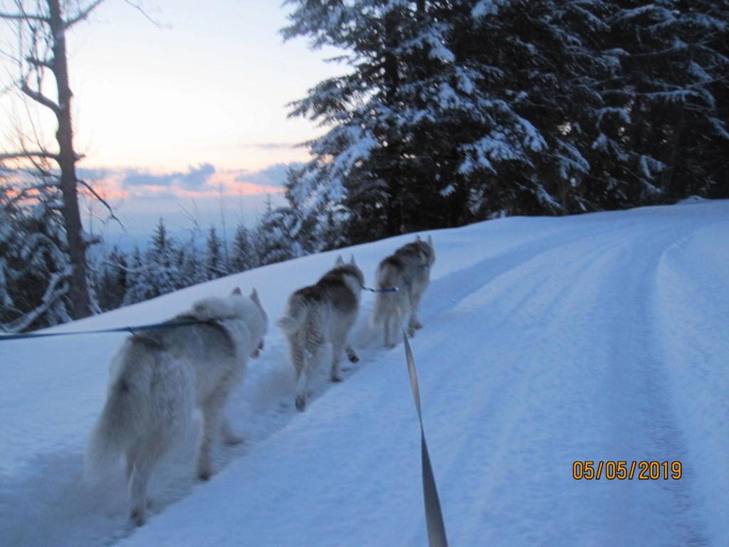 Saskia, Jiro, et leurs copains - Page 34 2015
