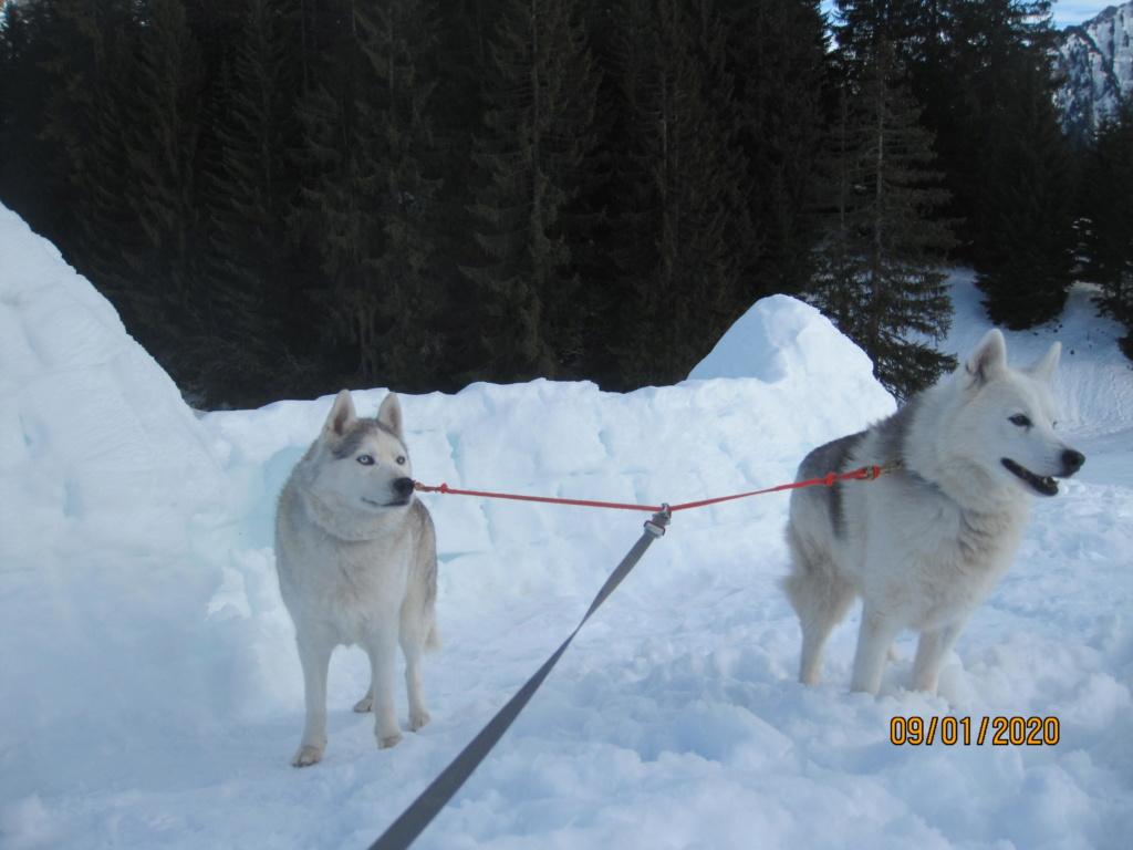 Saskia, Jiro, et leurs copains - Page 37 2109