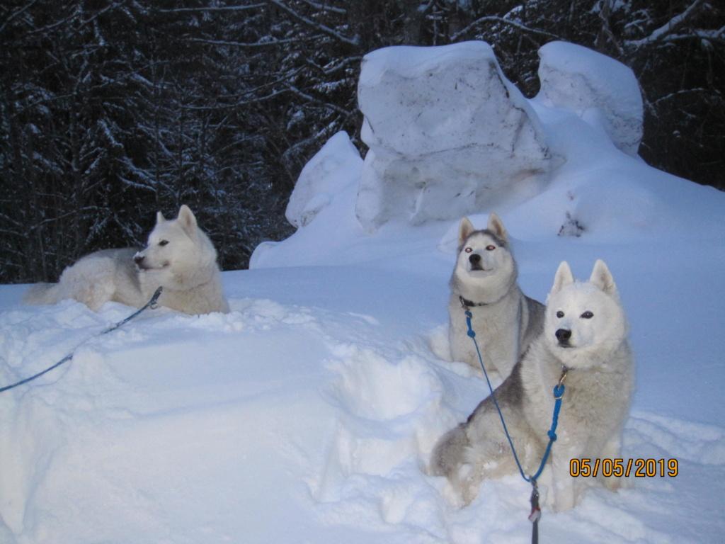 Saskia, Jiro, et leurs copains - Page 34 21b10