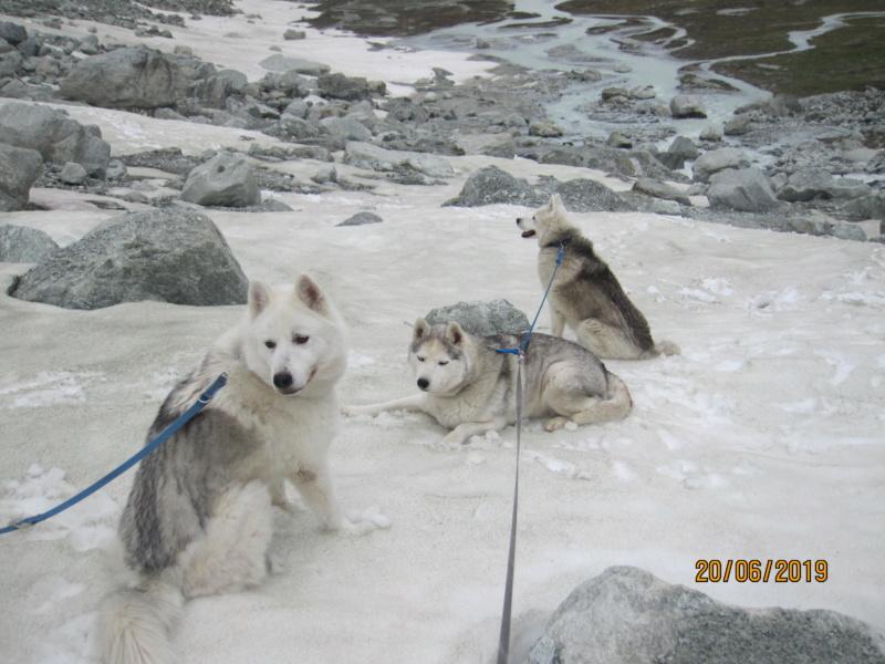Saskia, Jiro, et leurs copains - Page 34 2316