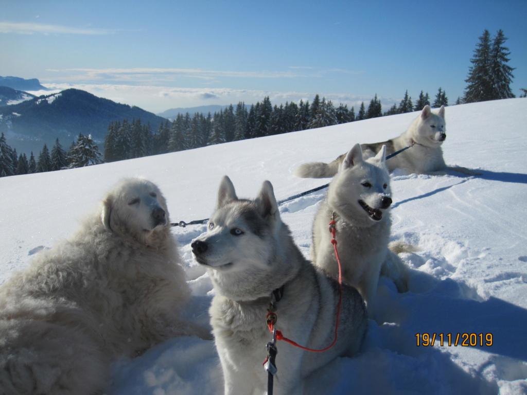 Saskia, Jiro, et leurs copains - Page 36 396