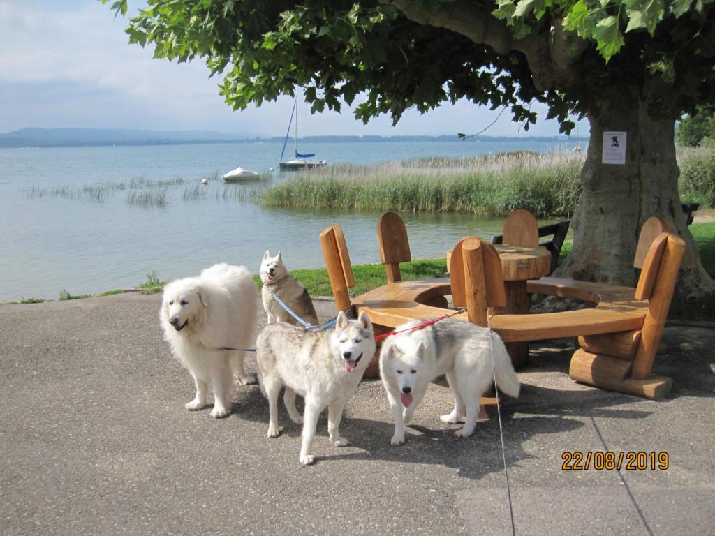 Saskia, Jiro, et leurs copains - Page 35 3_moat10
