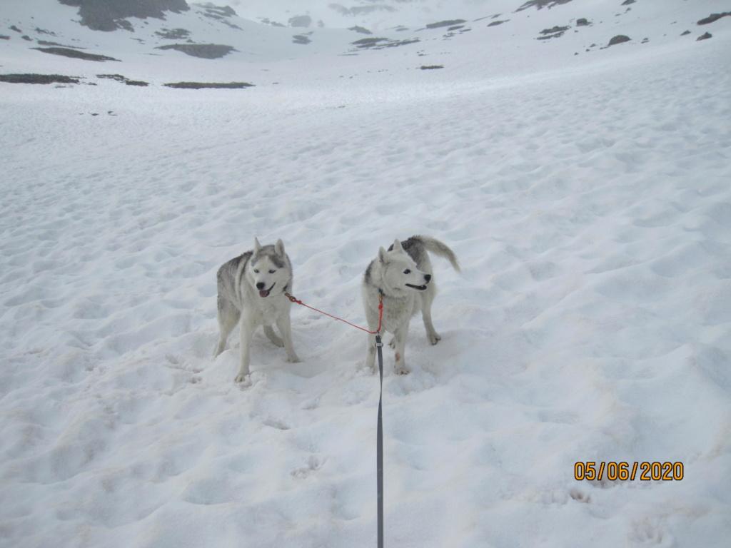 Saskia et Jiro retrouvent la Neige 496