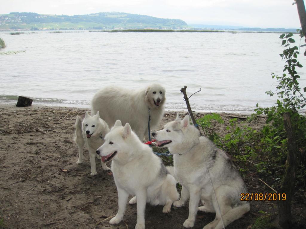 Saskia, Jiro, et leurs copains - Page 35 4_meyr10