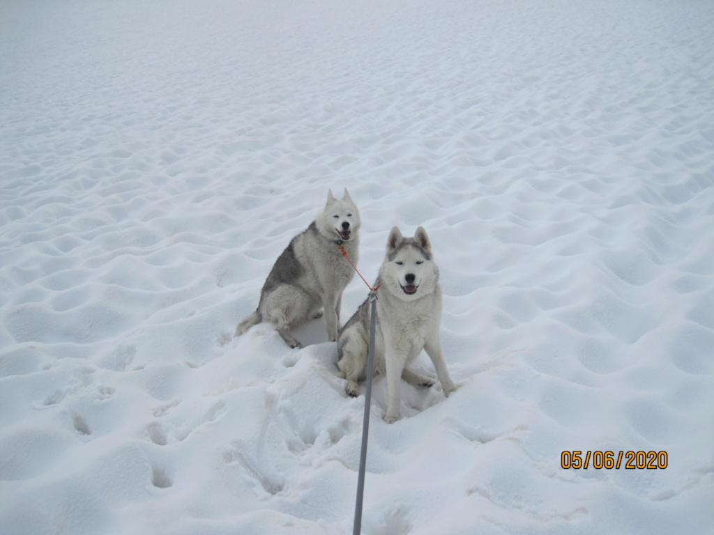 Saskia et Jiro retrouvent la Neige 850