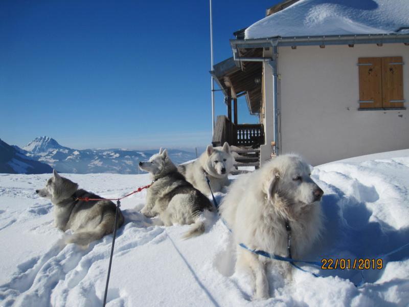 Saskia, Jiro, et leurs copains - Page 28 926