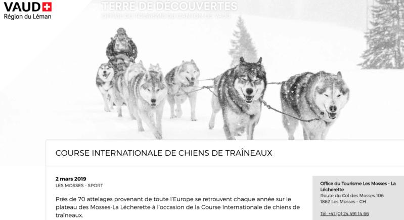 Course internationale de traîneaux à Chiens - Les Mosses - Suisse Mosses10