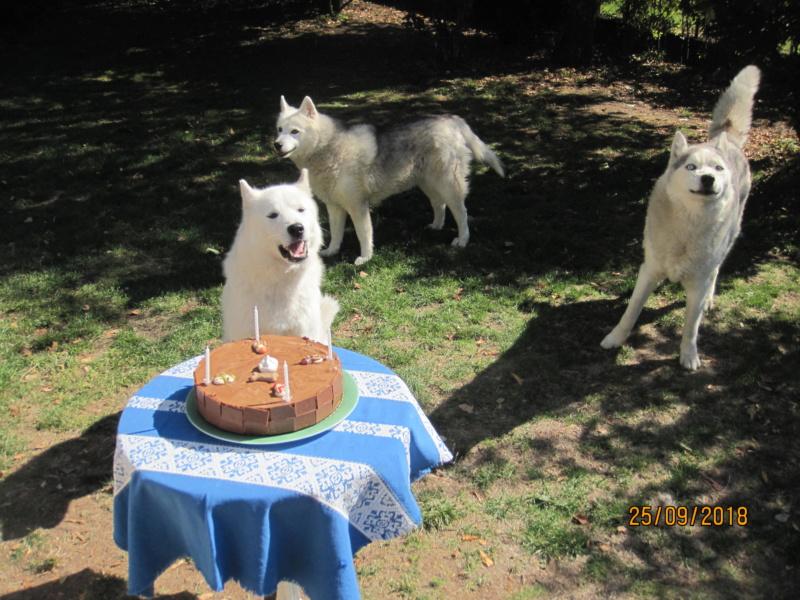 Saskia, Jiro, et leurs copains - Page 22 Saskia11