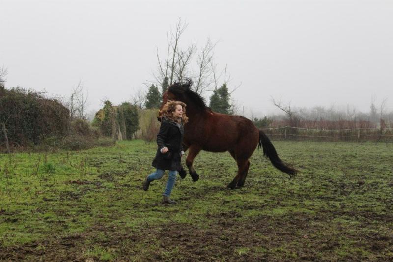Comment faire cabrer mon cheval ? 39772211