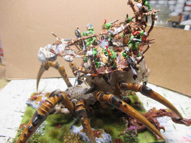 Araignées et chaleur Img_0015