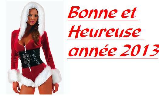 Bonne année 2013 !  17276212