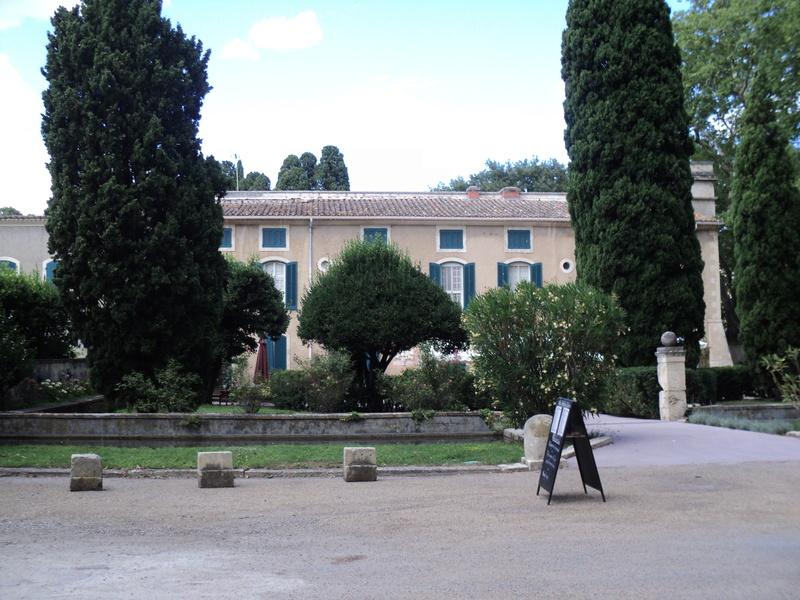 Museo Vivo Provence - Page 3 Dsc00451