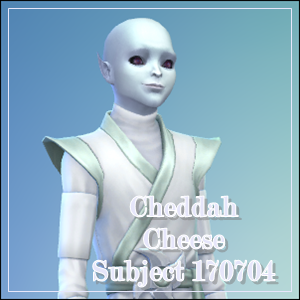 Cheddah Cheese: The Cheese Stands Alone ... But Not For Long Cheeda10