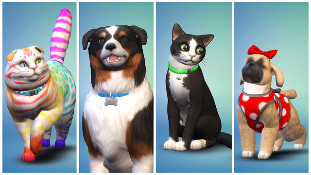 Cats and dogs Ts4_ep10