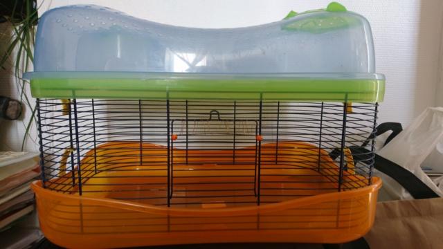 2 cages de convalescence ou quarantaine (69) Dsc_0612