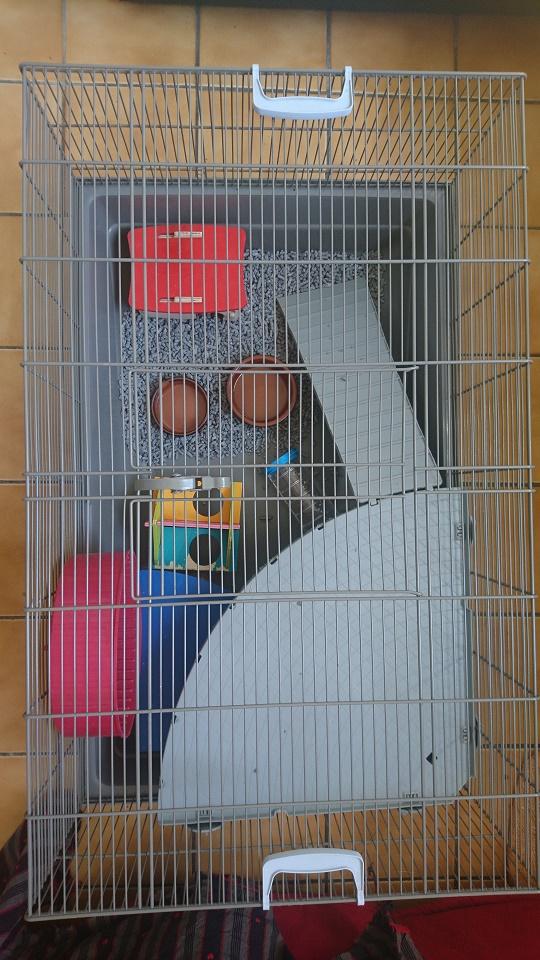 2 cages de convalescence ou quarantaine (69) Dsc_0712