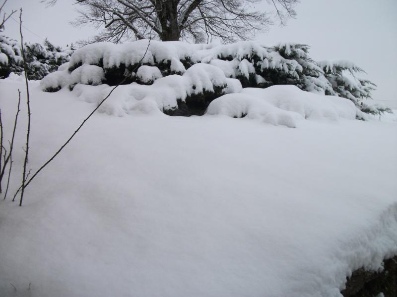 la neige est-elle arrivée chez vous ?  - Page 5 00410