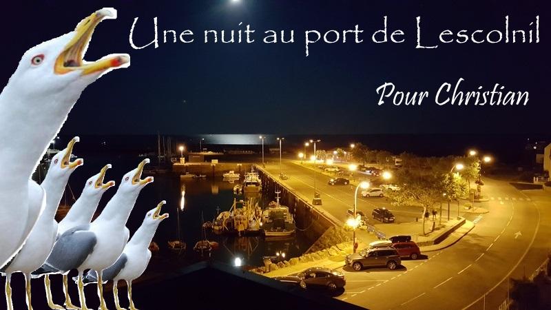week-end du 8/9-Juillet 2017 en Bretagne occidentale & bigoudène - Page 8 Photo310