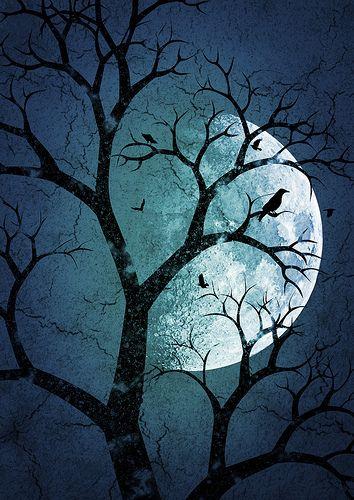 bonzour bonne zournée et bonne nuit notre ti nid za nous - Page 5 89ff6e10