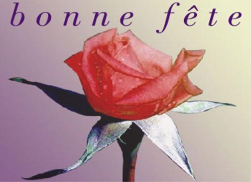 Bonne Fête Martine Bonne_10
