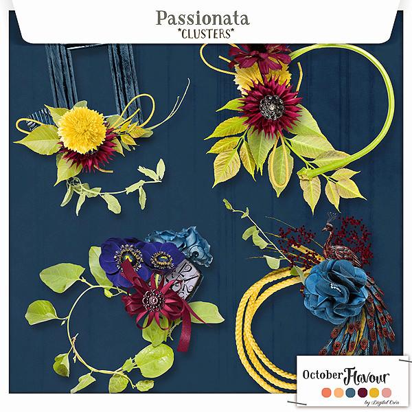 Passionata (flavour 14.10) only DC Xuxper48