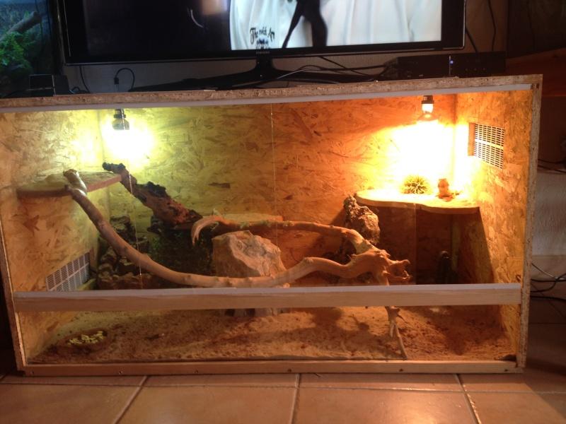 Regroupement des terrariums des membres Smaugy10