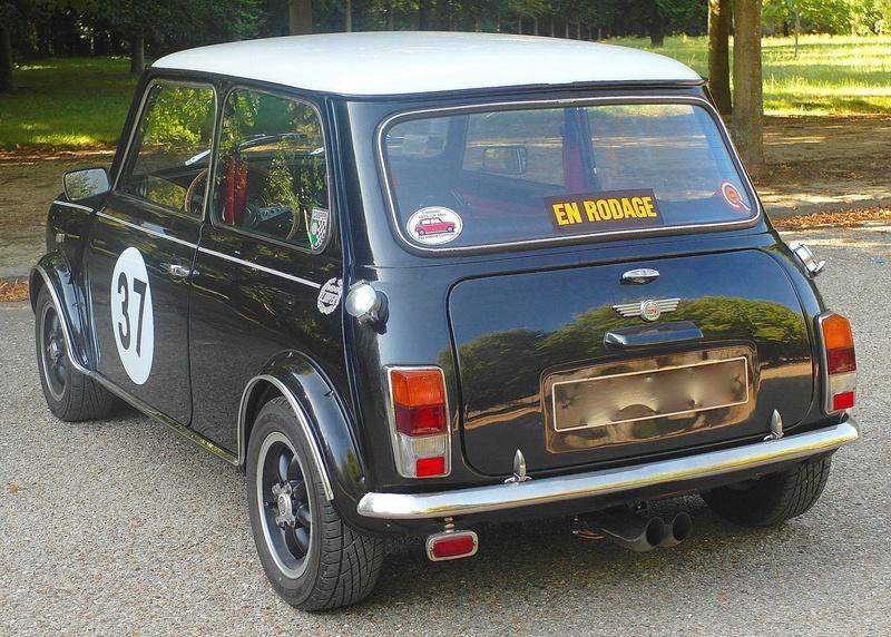Rover Cooper 91 et Leyland 1100 77 et Riley Elf 67 - Page 8 Sam_3018