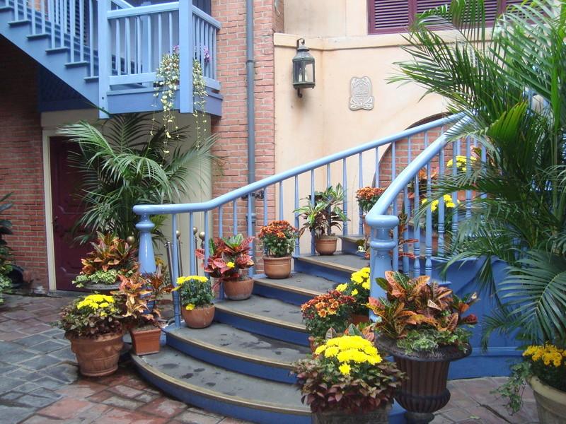 [Disneyland Resort] 17 au 19 octobre 2010 + l'Ouest américain Dsc08914