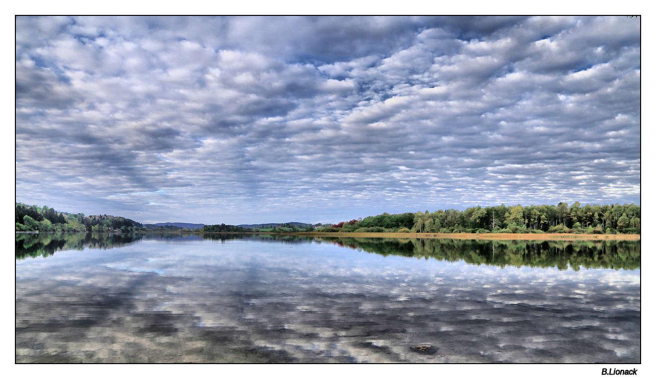 Au lac de l'abbaye, ce matin Abbaye10