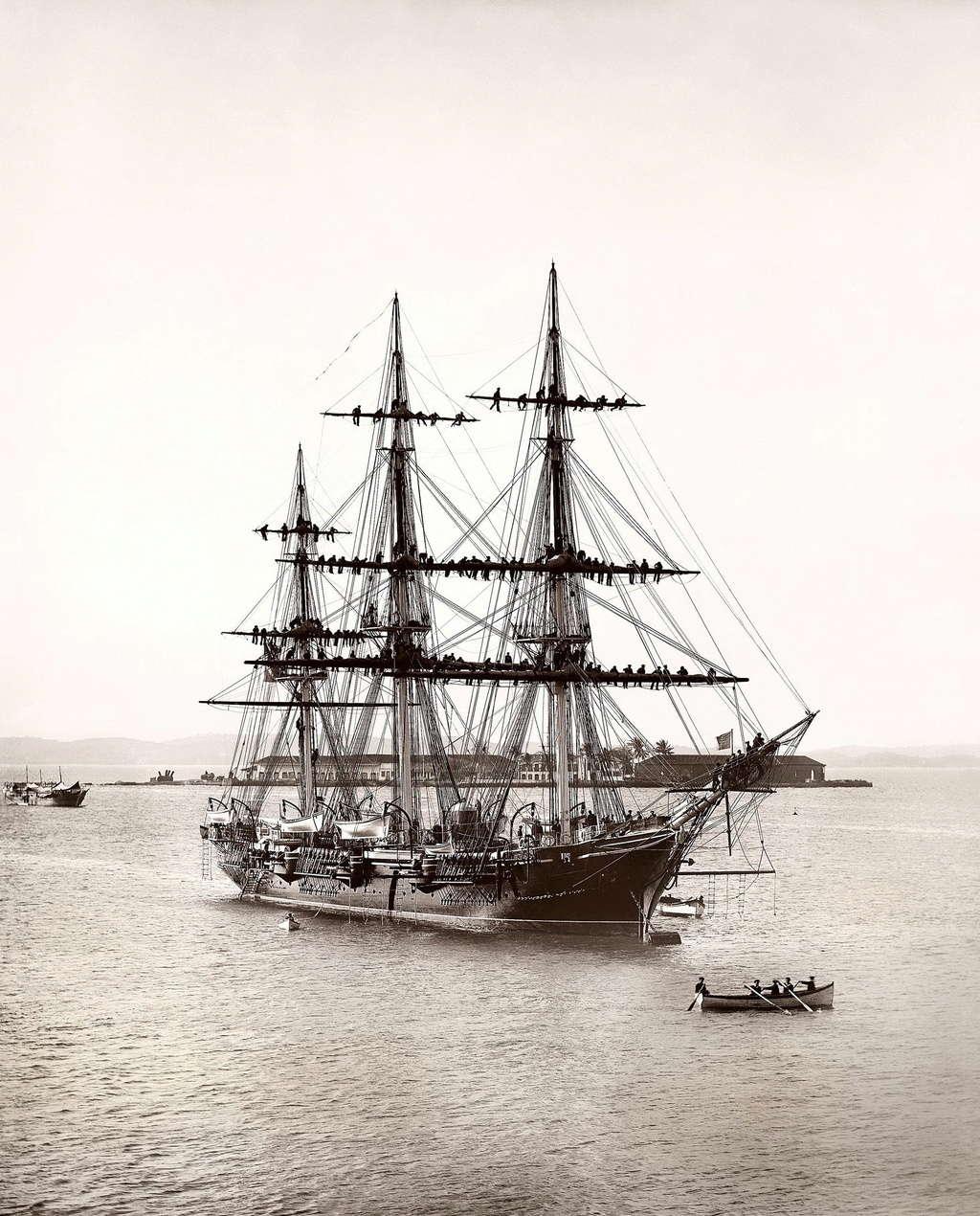 Marine brésilienne Almira10