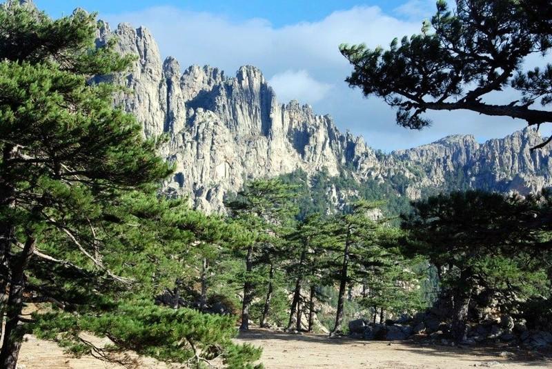 [Autres voyages/France] Notre voyage en Corse avec Paul - Page 2 Dsc_8817
