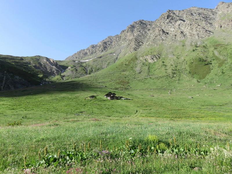 Stella Alpina 2017 : une concentre, un col Alpin et tu t' démerdes... Img_0945