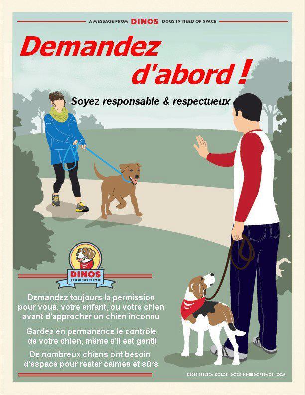 DINOS: le ruban jaune pour les chiens qui ont besoin d'espace  - Page 3 52908910