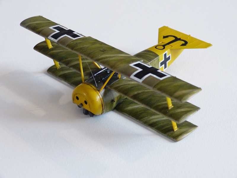 peinture brossée de Fokker Dr.I P1120774