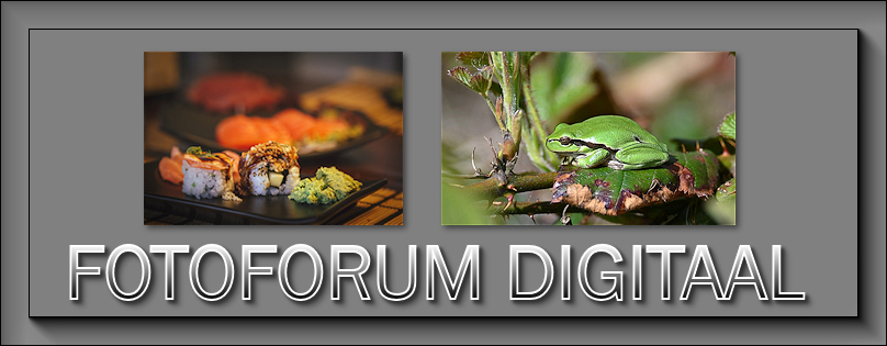 Fotoforum Digitaal - Portal April11