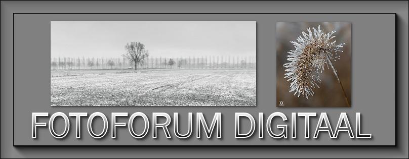 Fotoforum Digitaal Janari11