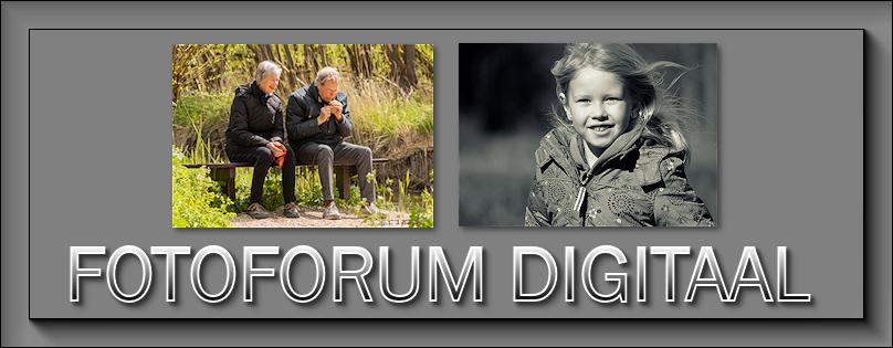 Fotoforum Digitaal - Portal Mei_2010
