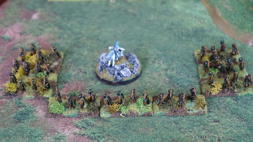 Armée Elfique Dsc01517
